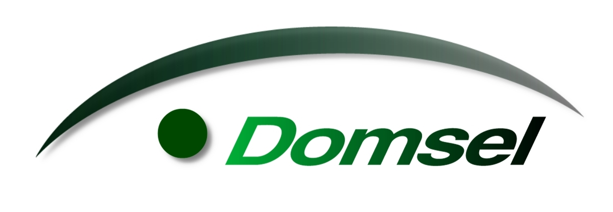 http://www.domsel-consulting.de